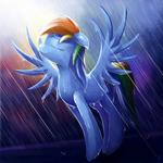 Rainy Dash