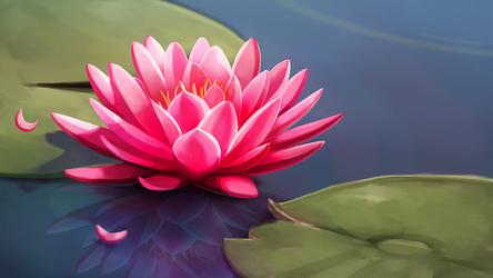 Lily pond by Camyllea