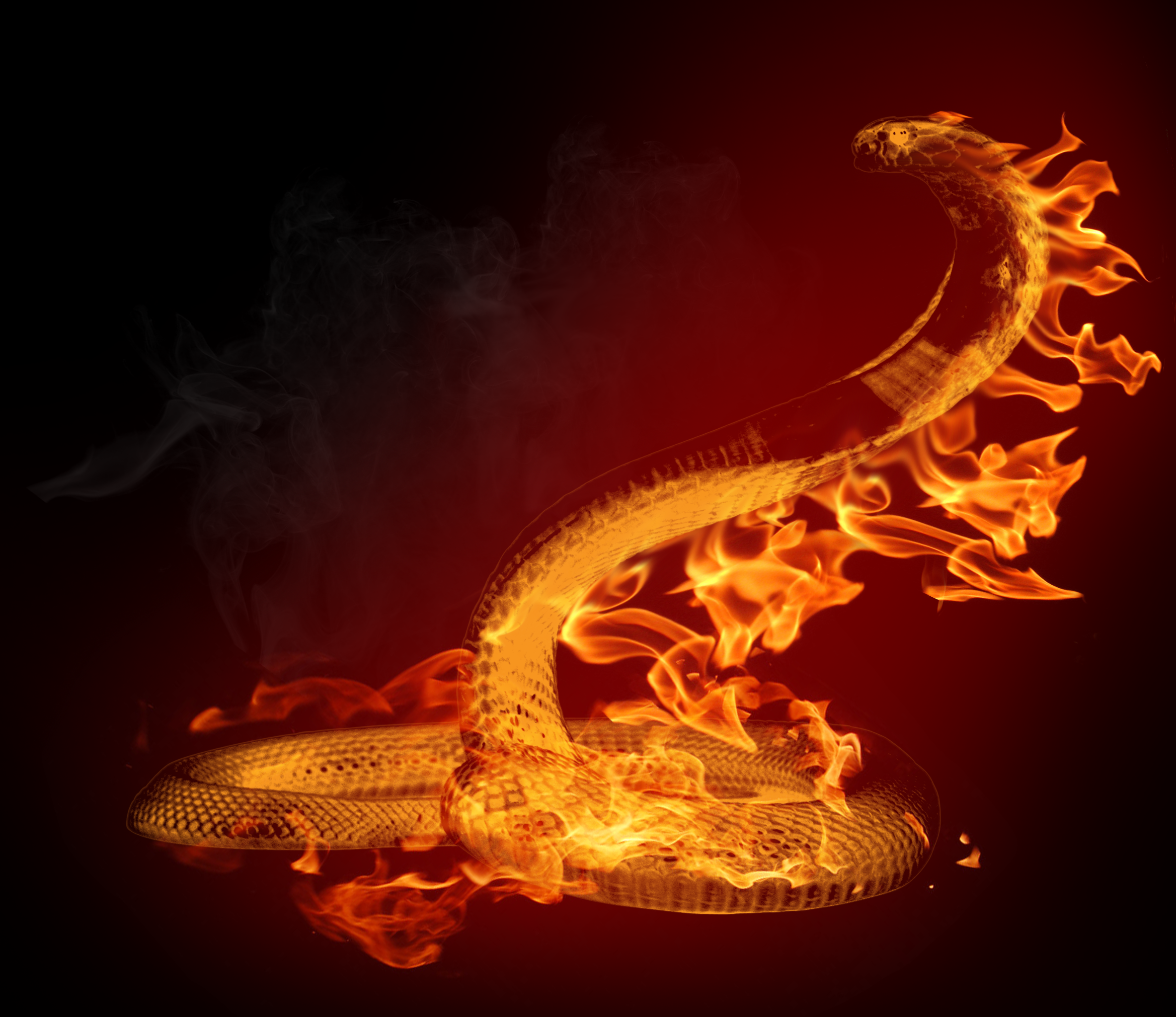 fire vs water wallpaper