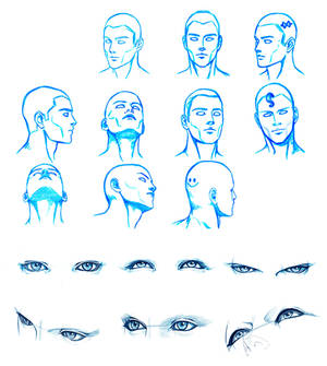 HEAD and EYES angles