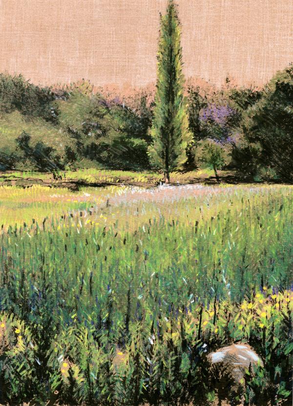 Wheat field by evankart
