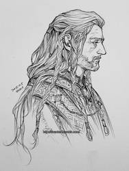 Old king Thorin by evankart