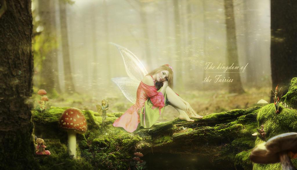 Fairy Kingdom by Datzun86