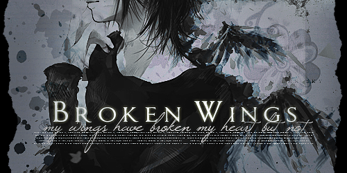 Broken Wings by Mr-Creepy