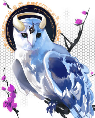 Owliii by SIIIMBOL