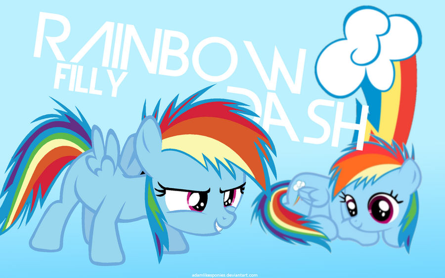 Filly Rainbow Dash Wallpaper by adamlikesponies