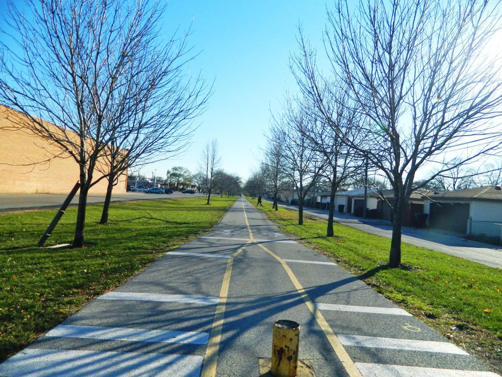 the trees and the side walk by o0oO-araceli-Oo0o