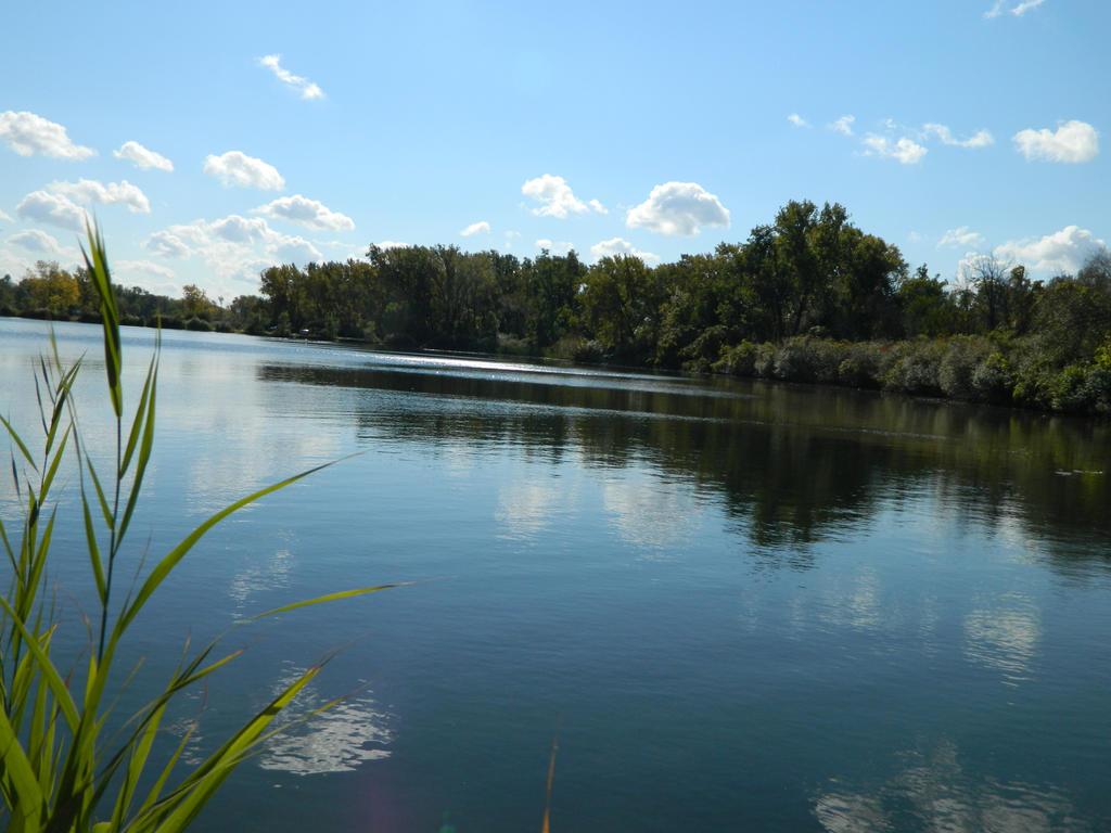 Across water by o0oO-araceli-Oo0o