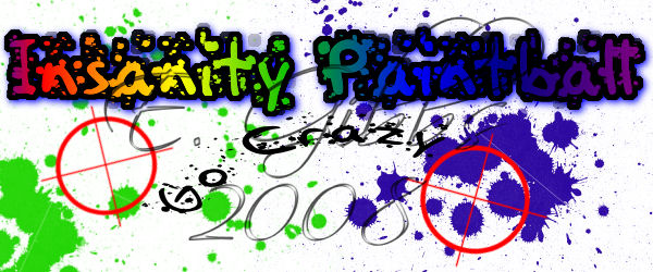 InsanityPaintball Logo Concept by flutterbyefaery