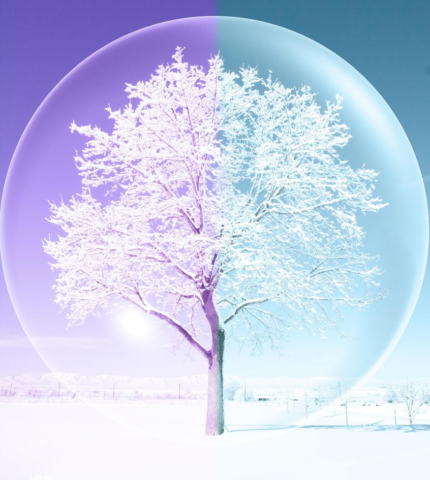 snow globe fantasy
