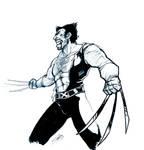 Wolverine quick sketch