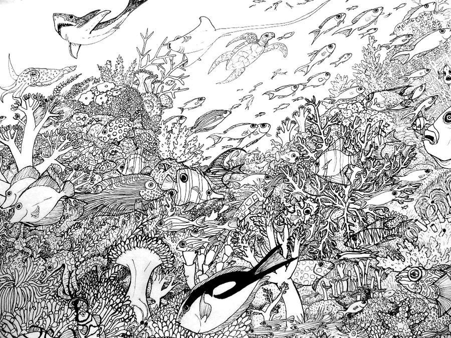 coloring pages coral reefs - photo #36