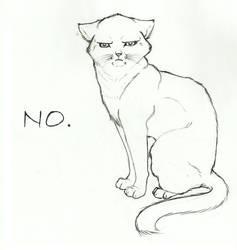 No-Cat