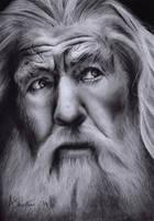 Gandalf the Grey by Aj3sh
