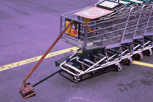 Hostage Shopping Carts