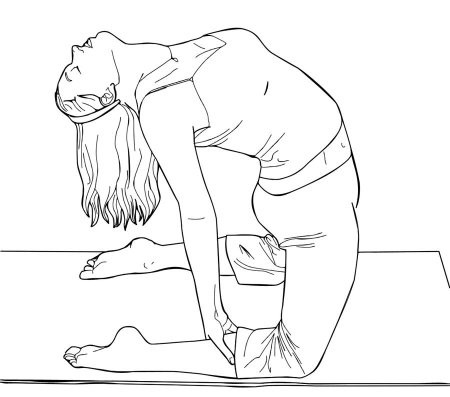 Camel Pose Lineart by Vectriss