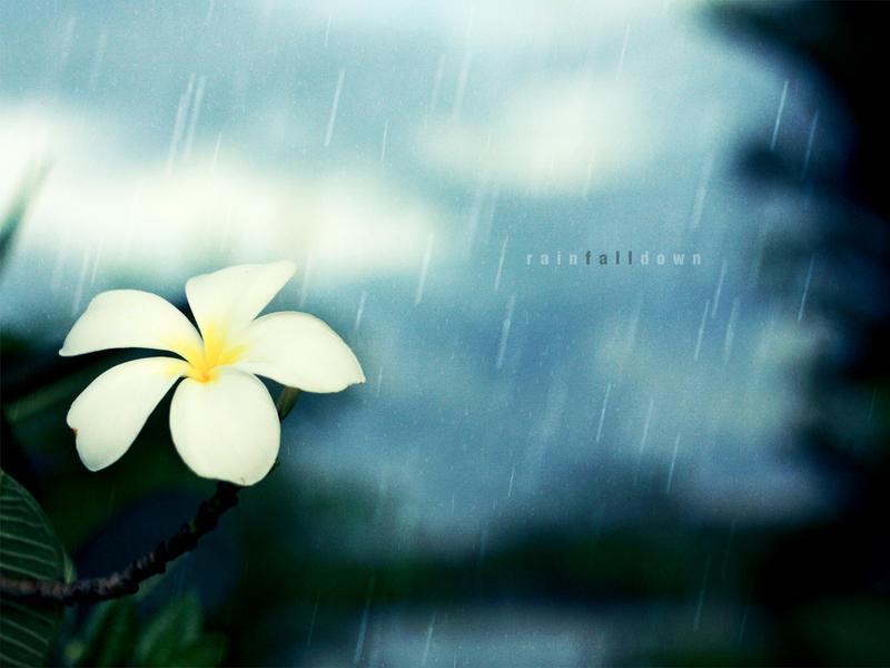 Rain Fall Down by djniks97