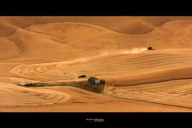 The Harvest by djniks97