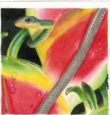 snake by TheKittyGnome