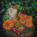 A cat with pumpkins
