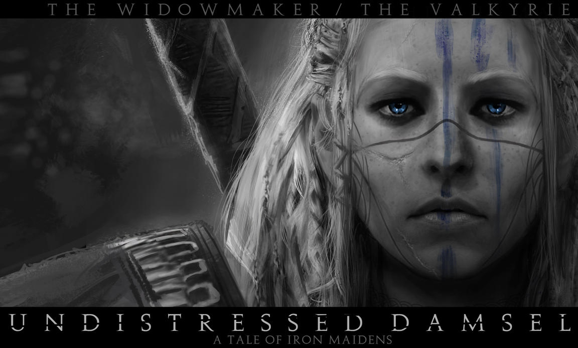 Undistressed Damsel valkyrie bannerhd by jamga