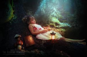 The Sleeping Princess by ducvyt