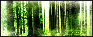 Trees by DantesHavok