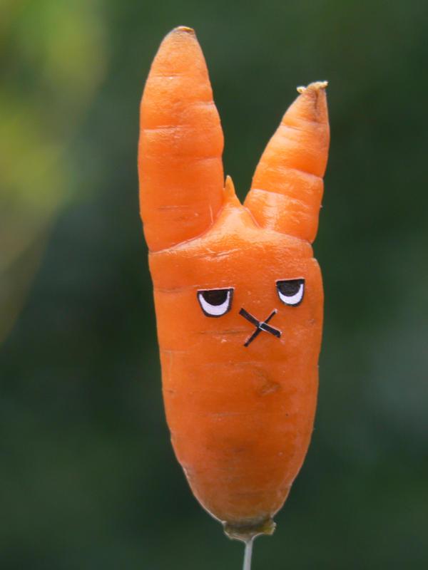 carotte amusante