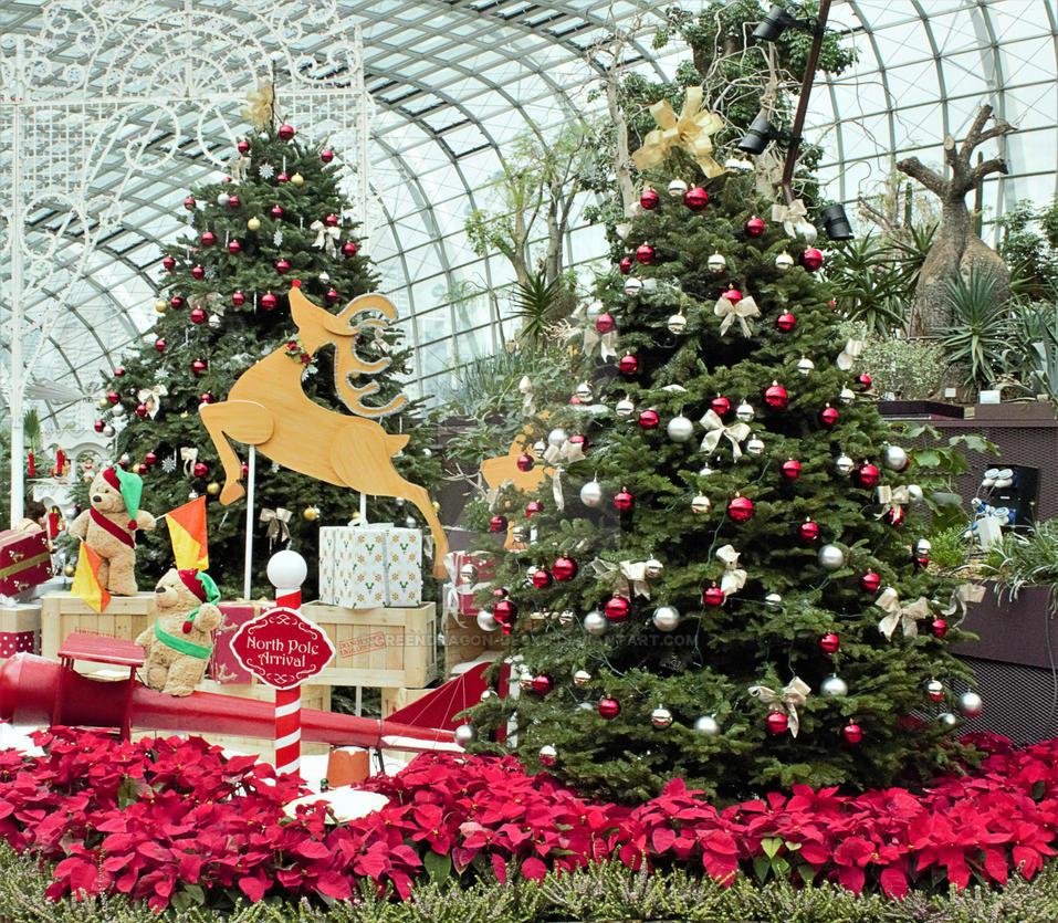 Christmas exhibition by greendragon-gecko