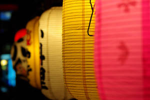 Seoul : Colored Paper Lanterns