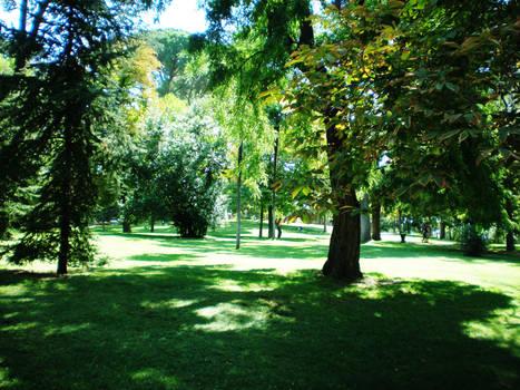 Retiro park XI