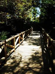 Retiro park XVIII