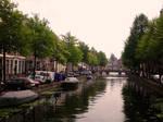 Leiden III