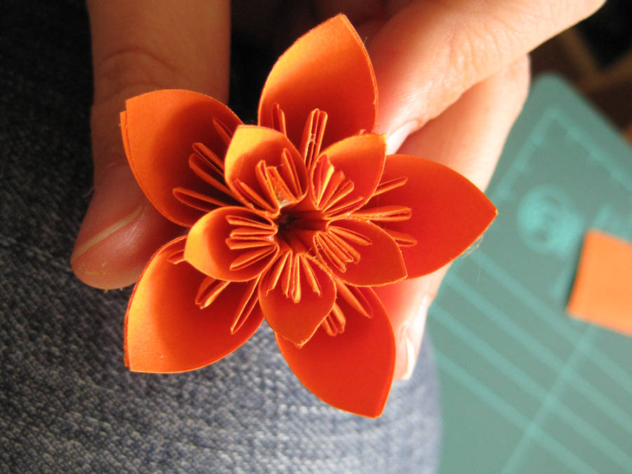 Orange Paper Flower by lalalura