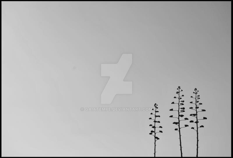 Alone by GaiaTempe
