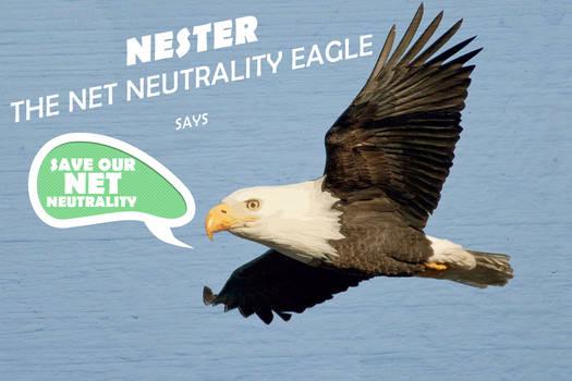Nester says...
