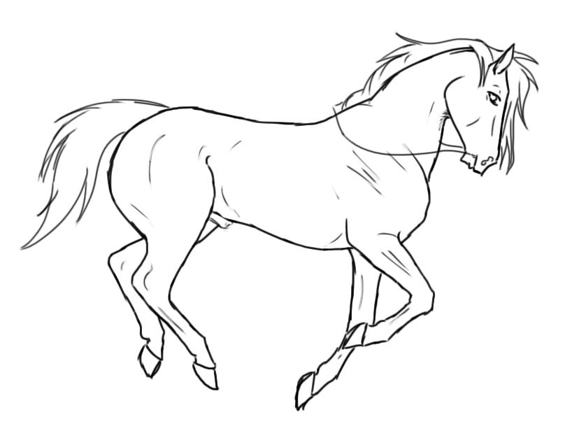 ::karasus white horse:: by WeltBlue on DeviantArt