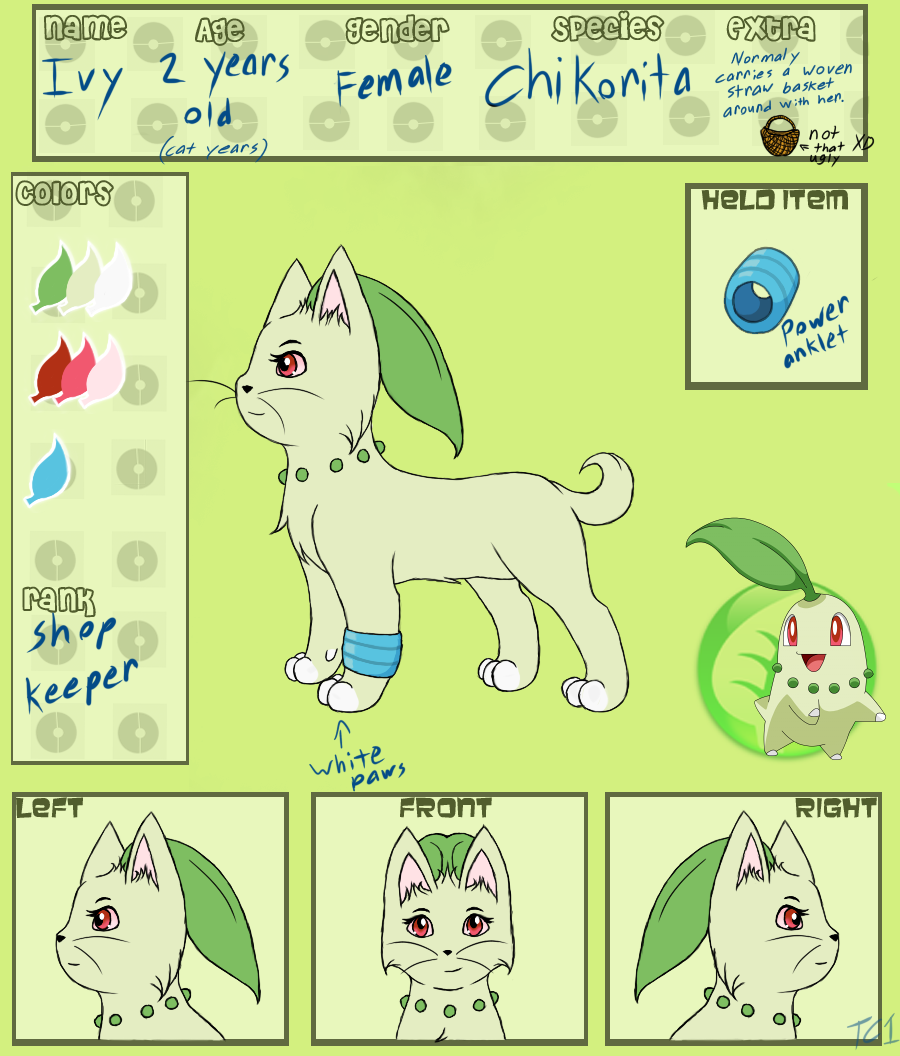 PokePaws -Ivy App- by slycooper998
