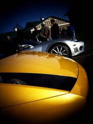 Lamborghini Gleaming by rioross