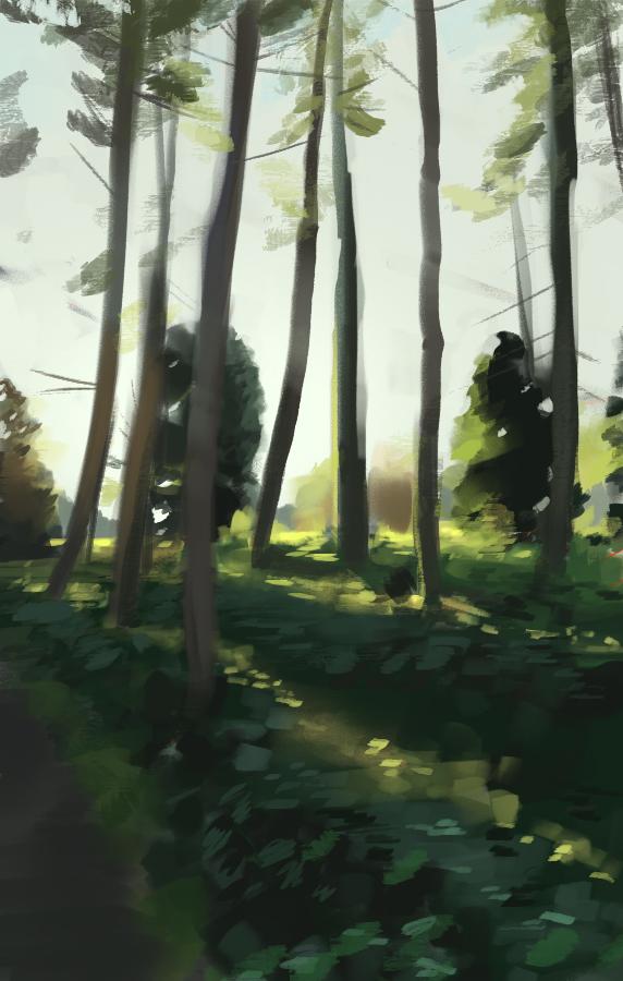 Sunlit Forest by Cruelus