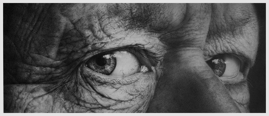 Through The Iris III by nimra