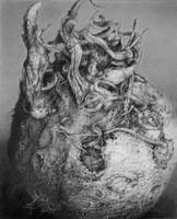 Pencil study of Celeriac by arminmersmann