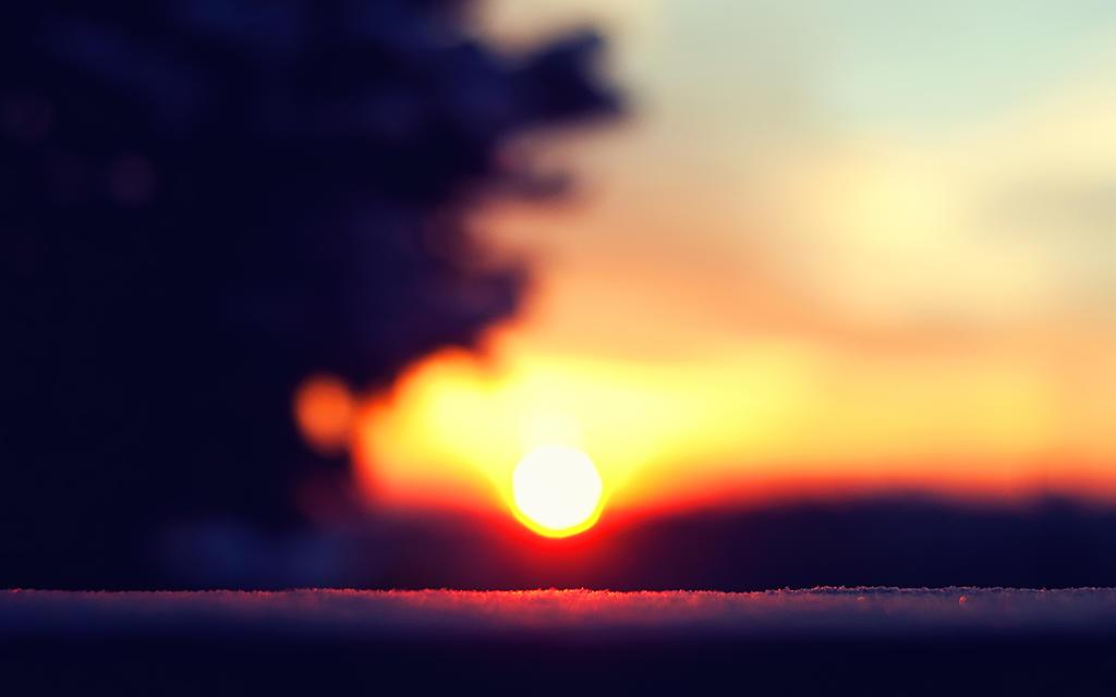 Snowy Sunrise