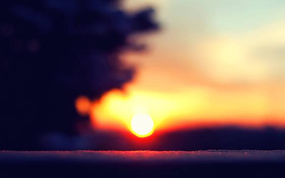 Snowy Sunrise by solefield
