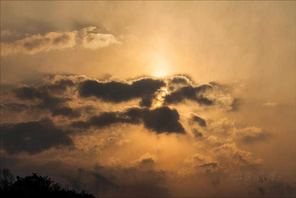 The Evening Sun by BFGL