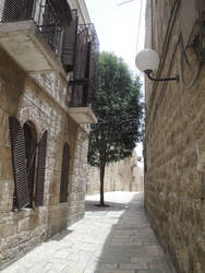 Jerusalem Street View