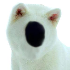 Inu-Amalgamate's Profile Picture