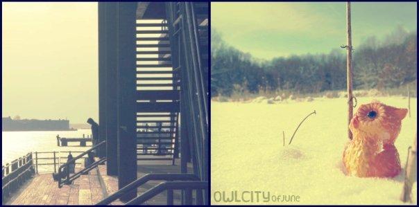 Owl city of june - photo#18