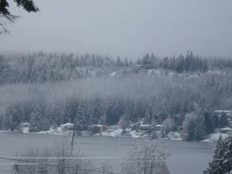 winter on kitsap lake by uberspazzytreehugger