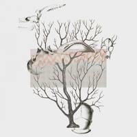 bones tree